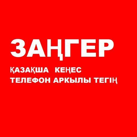 Тәжірибелі заңгер/адвокат/зангер/юрист/алимент/ажырасу/сот