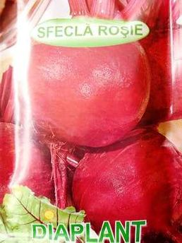 Seminte de sfecla rosie 25 grame