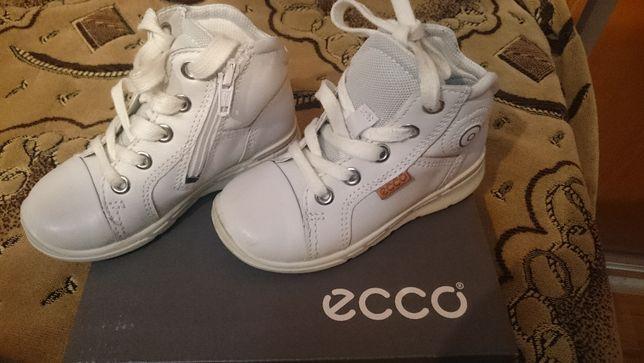 Ghetute ECCO fete