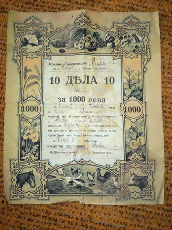 Акция за притежание на 10 дяла от капитала на кооперация.