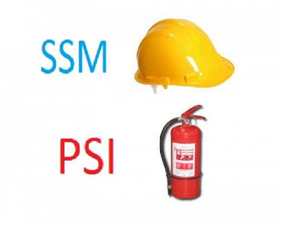 Servicii P.S.I și S.S.M