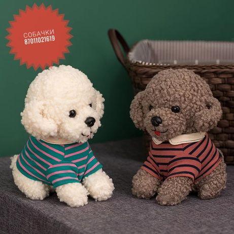 Мягкие игрушки Собачки плюшевые мишки Тедди