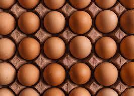 Продам инкубационное яйцо Ломан Браун.