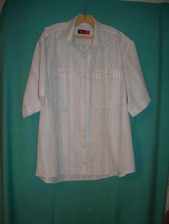 Мъжки панталони и ризи