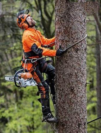 Спил/Распил деревьев любой сложности. Агаш кесемиз/спасти кошку