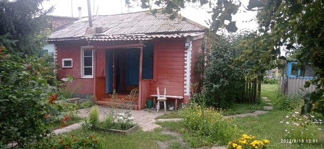 Продам дом. Село Саратовка