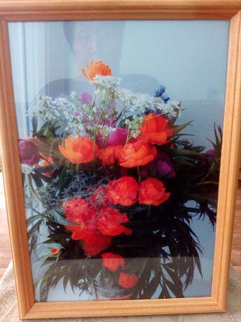 Продается картины,цветы горы Восточного Казахстана.