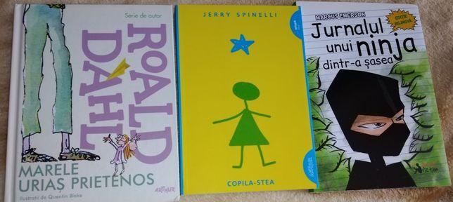 Cărți adolescenți