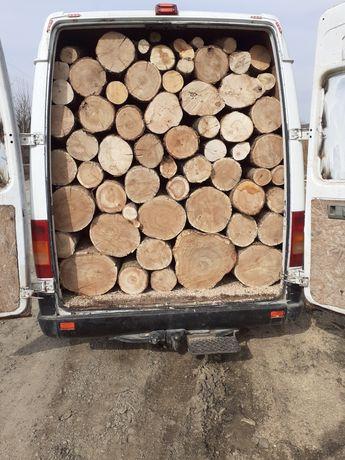 Aduc lemne pentru foc