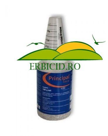 Pincipal erbicid PORUMB