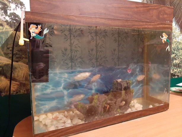 Пустой аквариум 50л