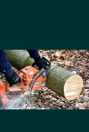 Tai lemne metri steri copaci