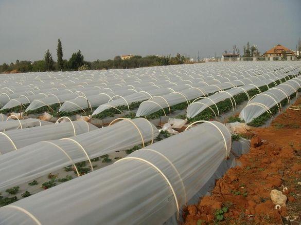 Найлон вторичен полиетилен - за оранжерии за разсад