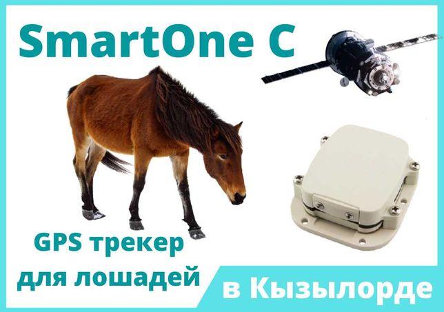 GPS трекер в Кызылорде