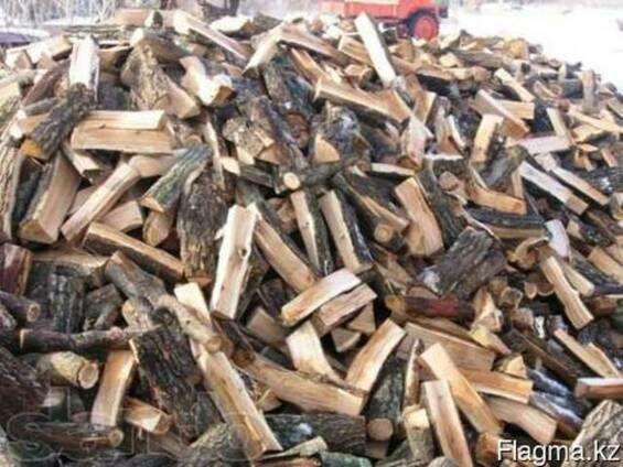 Продам дрова разных сортов