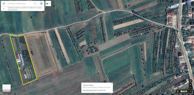Inchiriez microferma cu 11.000 mp teren agricol, utilitati, Gheboieni