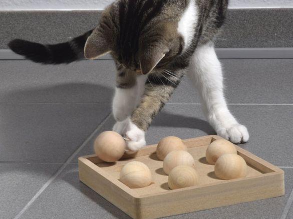 НОВИ! Игра за котки развиваща интелекта