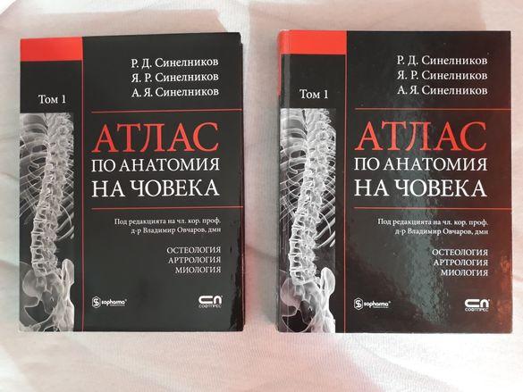 Атласи по анатомия на човека