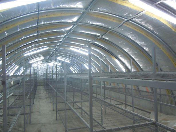 Vand afacere ciupercarie 3 hale productie plus casa