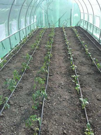 3x2 3x3 3x5 3x7 3x9 3x10 - SOLAR GRADINA legume/flori NOU!
