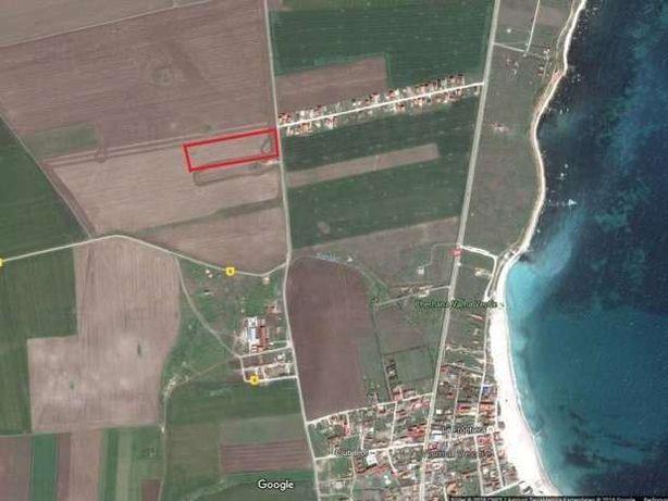 Teren Vama Veche 1,9ha (19.000m²) de la proprietar, strada asfaltata