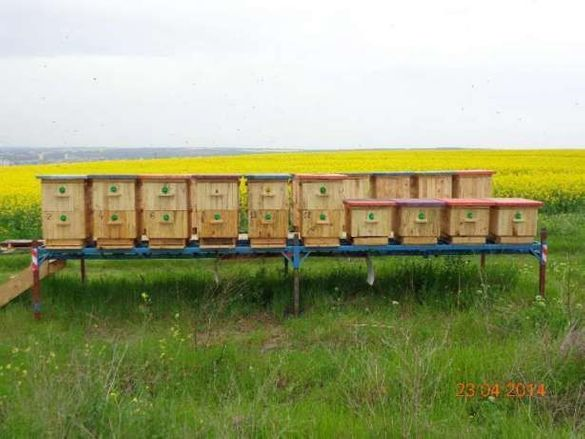 Пчеларски Платформи