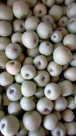 Яблоко свежый золотой привосход. По 350 теңге.