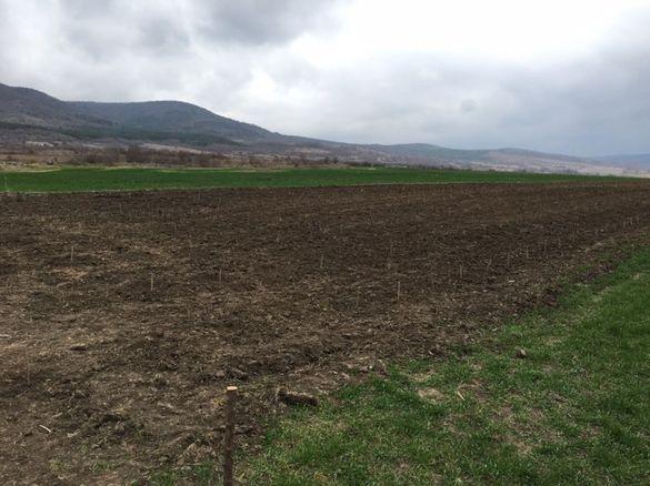 Земя в село Горица