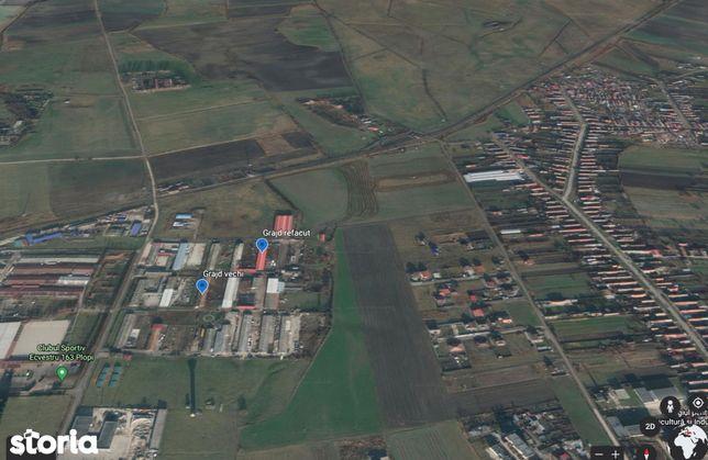 Teren intravilan 781 mp si grajd situate in Prejmer, judetul Brasov