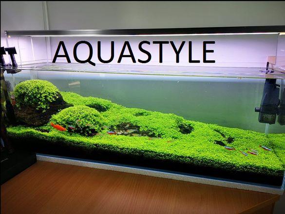 Аквариуми изработени от Clear Vision стъкло