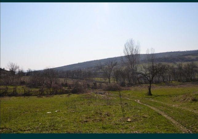 Teren Ramnicu Valcea strada Macesului Cazanesti 1200 mp deschidere 24m