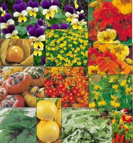 20seminte flori/frunze comestibile:panselute,craite,stir,crizantema sa