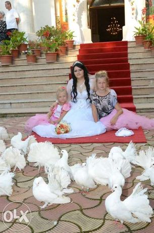 Porumbei/covor rosu/stalpisori pentru nunta Buzau