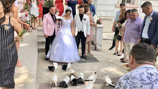 Porumbei pt nunta