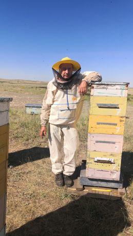 Мед натуральный,Качественный.  С личной пасеки!!! От пчеловода!