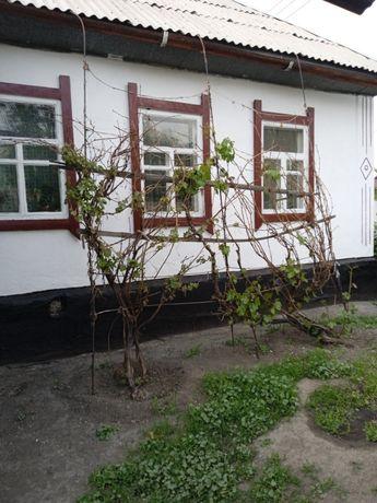 Срочно продам дом в Талдыкоргане или меняю на дом в городе Алматы