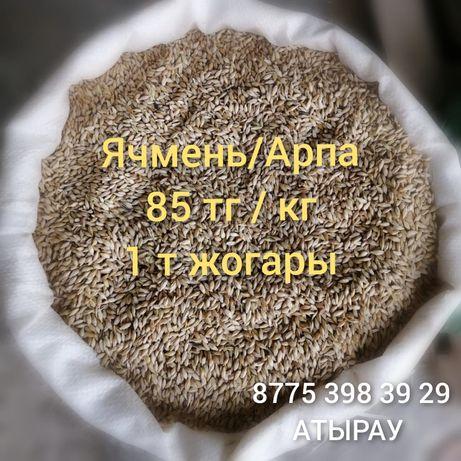 Арпа ячмень Жем Бидай Кебек Сұлы Комбикорм