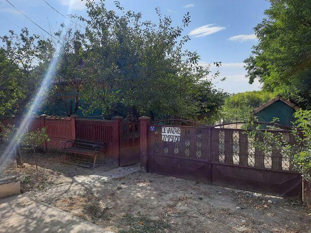Casa cu livada de pere 3400 mp
