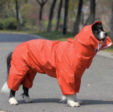 Кучешки дъждобран на малка порода