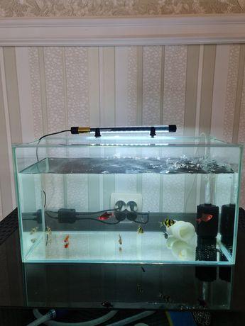 Продам аквариум 30 л. с рыбами