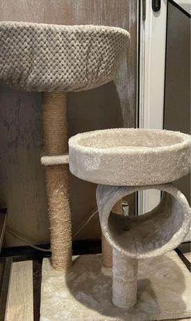 Sisal pisici,ansamblu