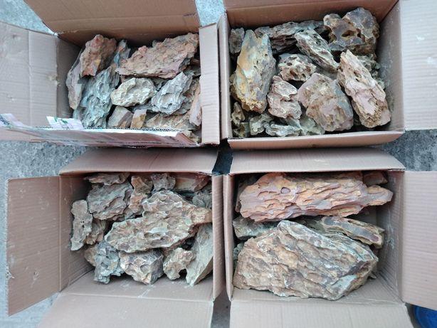 Pietre dragon stone acvariu pesti creveti