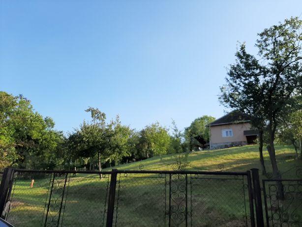 Casa municipiu Brad