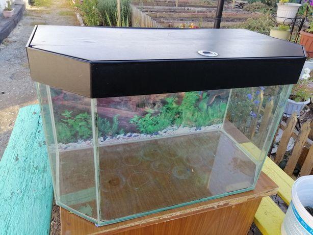 Продам аквариум для рыбок
