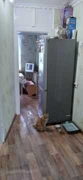 Квартира трех3 комнатная