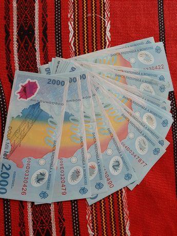 Lot 25 bancnote.