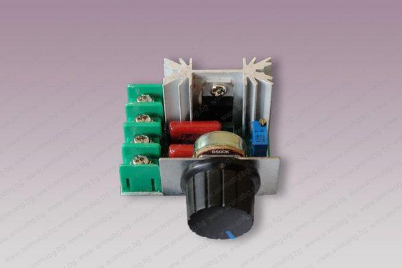 ANIMABG Регулатор на мощност 2000W 220V AC