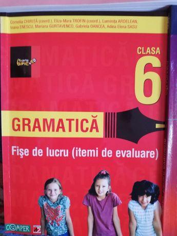 Gramatica cls 6
