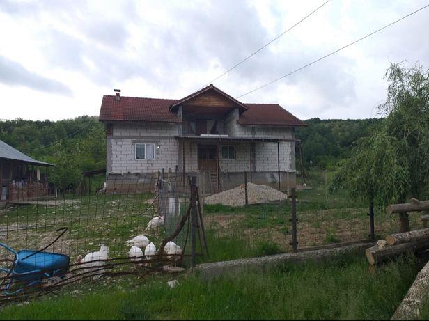 Vand casa Dragasani-Gusoeni