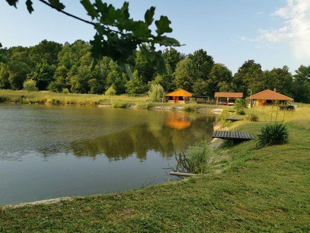 Vând proprietate de vis, 5,78 ha,lângă Mănăstirea Dobrești-Timiș